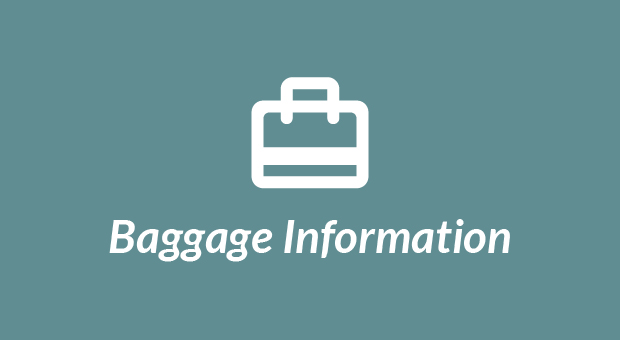 airline baggage information