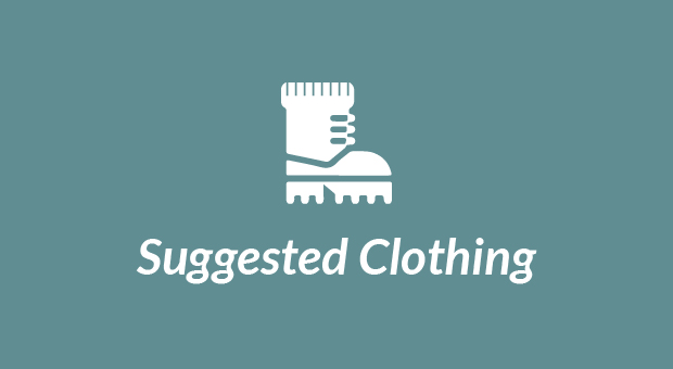 suggested clothing